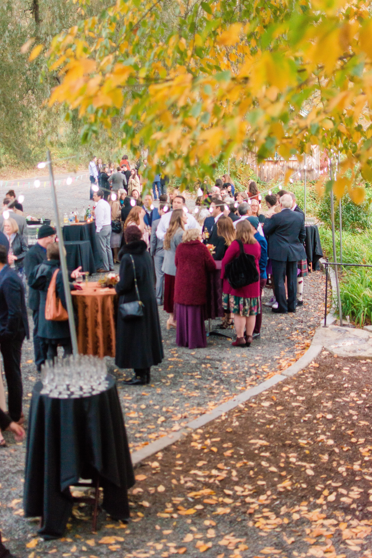 wedding guests under